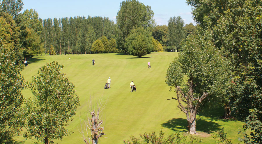 golfers on clane golf course